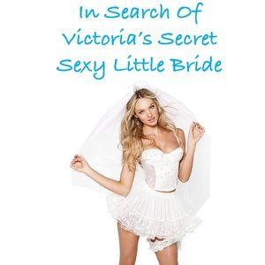 ISO Victoria's Secret Sexy Little Bride Costume